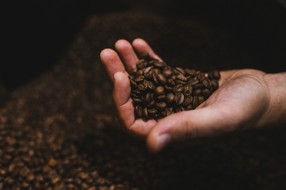 Humble Beast launches coffee arm, Odd Thomas explains business model